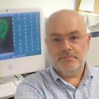 Profile photo of Alexander Chervonsky, expert at University of Chicago