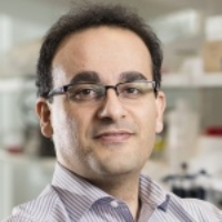 Profile photo of Alireza Abbaspourrad, expert at Cornell University