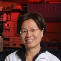 Profile photo of Annie Wong-Beringer, expert at University of Southern California