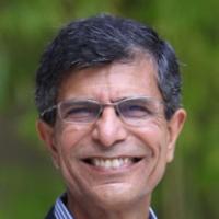 Profile photo of Asoo J. Vakharia, expert at University of Florida