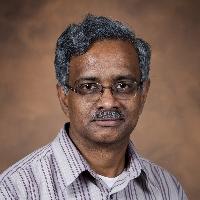 Profile photo of Bala Rathinasabapathi, expert at University of Florida