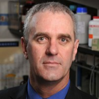 Profile photo of Bradley Smith, expert at University of Notre Dame