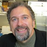 Profile photo of Brendan Bohannan, expert at University of Oregon