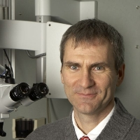 Profile photo of Brian Westerberg, expert at University of British Columbia
