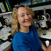 Profile photo of Carol Greider, expert at Johns Hopkins University