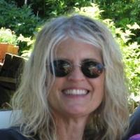 Profile photo of Cathie Martin, expert at Boston University