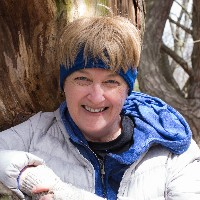 Profile photo of Cathy Crowe, expert at Ryerson University