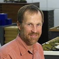 Profile photo of David Steadman, expert at University of Florida