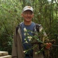 Profile photo of Doug Soltis, expert at University of Florida