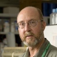 Profile photo of Edward Walker, expert at Michigan State University