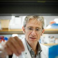 Profile photo of Fabio Rossi, expert at University of British Columbia