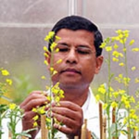 Profile photo of Habibur Rahman, expert at University of Alberta