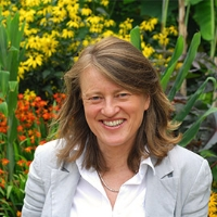 Profile photo of Helen Margetts, expert at University of Oxford