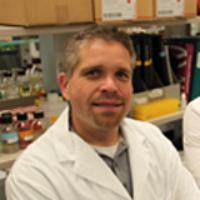 Profile photo of Hendrik Poinar, expert at McMaster University