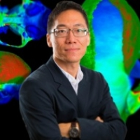 Profile photo of Jack Tseng, expert at State University of New York at Buffalo