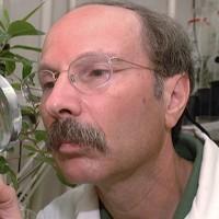 Profile photo of James P. Cuda, expert at University of Florida