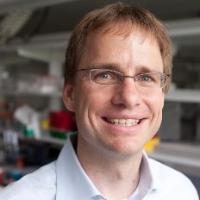 Profile photo of Jan Lammerding, expert at Cornell University