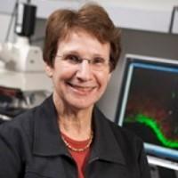 Joanne Weinberg, University of British Columbia