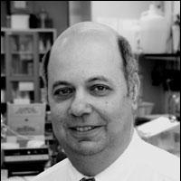 Profile photo of Joel Weiner, expert at University of Alberta