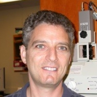 Profile photo of Joseph Bass, expert at Northwestern University