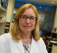 Profile photo of Karen Anderson, expert at Arizona State University