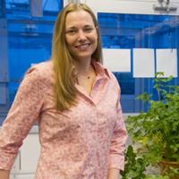 Profile photo of Kari A. Segraves, expert at Syracuse University