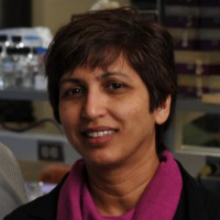 Profile photo of Kasturi Haldar, expert at University of Notre Dame