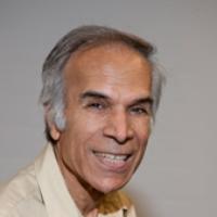 Profile photo of Kul Bhatia, expert at Western University