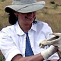 Profile photo of Laurie J. Bonneau, expert at Trinity College