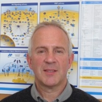 Profile photo of Len Seymour, expert at University of Oxford