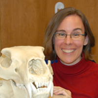 Profile photo of Lisa Hodgetts, expert at Western University