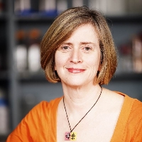 Profile photo of Lois M. Mulligan, expert at Queen's University