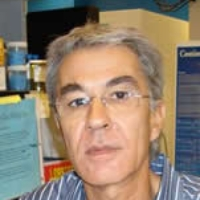 Profile photo of Manel Jordana, expert at McMaster University