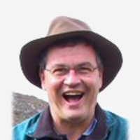 Profile photo of Marcello Veiga, expert at University of British Columbia