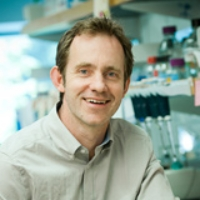 Profile photo of Matthew Farrer, expert at University of British Columbia