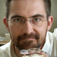 Profile photo of Matthew Vickaryous, expert at University of Guelph