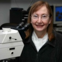 Profile photo of Maureen Hanson, expert at Cornell University