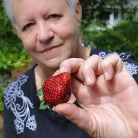 Profile photo of Mickie Swisher, expert at University of Florida