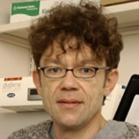 Profile photo of Miodrag (Mike) Grbic, expert at Western University