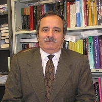 Profile photo of Muhammad Sahimi, expert at University of Southern California