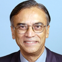 Profile photo of Narsing A. Rao, expert at University of Southern California