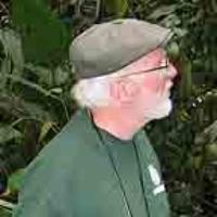 Profile photo of Norris H. Williams, expert at University of Florida