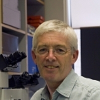 Profile photo of Paul Bolam, expert at University of Oxford