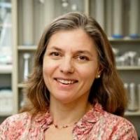 Profile photo of Rachel Wevrick, expert at University of Alberta