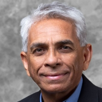 Profile photo of Salim Mansur, expert at Western University