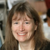 Profile photo of Sandra T. Davidge, expert at University of Alberta