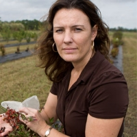 Profile photo of Sandra Wilson, expert at University of Florida