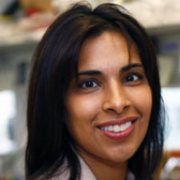 Profile photo of Sangeeta Bhatia, expert at Massachusetts Institute of Technology