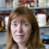Profile photo of Sarah Gilbert, expert at University of Oxford