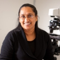 Profile photo of Shermali Gunawardena, expert at State University of New York at Buffalo